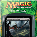 Magic: The Gathering - Theros Intro Pack - Devotion to Darkness