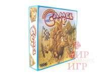 Camel Up: По верблюдам!