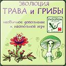 Эволюция. Трава и грибы
