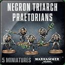 Warhammer 40000. Necrons: Triarch Praetorians