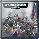 Warhammer 40000. Tyranid Termagant Brood
