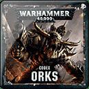 Warhammer 40000. Codex: Orks (Hardback)