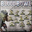 Blood Bowl (2016 edition): The Scarcrag Snivellers – Goblin Blood Bowl Team
