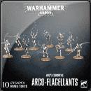 Warhammer 40000. Adepta Sororitas: Arco-flagellants