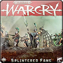 Warhammer Age of Sigmar. Warcry: Splintered Fang