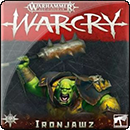 Warhammer Age of Sigmar. Warcry: Ironjawz Card Pack