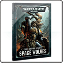 Warhammer 40000. Codex: Space Wolves (Hardback)