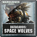 Warhammer 40000. Datacards: Space Wolves