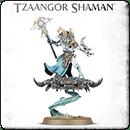 Warhammer Age of Sigmar. Tzeentch Arcanites: Tzaangor Shaman