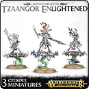 Warhammer Age of Sigmar. Tzeentch Arcanites: Tzaangor Enlightened / Skyfires