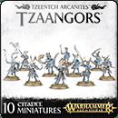 Warhammer Age of Sigmar. Tzeentch Arcanites: Tzaangors