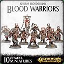 Warhammer Age of Sigmar. Khorne Bloodbound: Blood Warriors