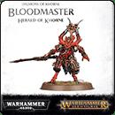 Warhammer Age of Sigmar (Warhammer 40000). Daemons of Khorne: Bloodmaster, Herald of Khorne