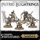 Warhammer Age of Sigmar. Nurgle Rotbringers: Putrid Blightkings