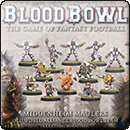 The Middenheim Maulers – Old World Alliance Blood Bowl Team