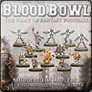 The Middenheim Maulers – Old World Alliance Blood Bowl Team