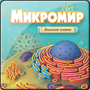 Микромир: Биология клетки