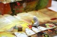 Настольная игра Spiegel Spukschloss (Зеркальный замок с привидениями)