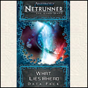 Android Netrunner LCG: What Lies Ahead